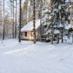 Коттеджный посёлок «Майнила»  Выборгское шоссе 48 км